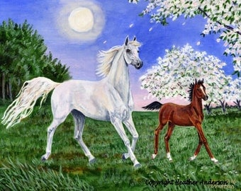 """8x10 giclee print, """"Apple Blossom Moon"""",   Arabian mare and foal, hand drawn, horse art, Heather Anderson"""