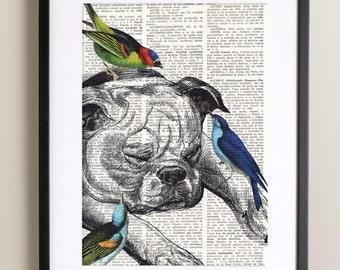 DICTIONARY Art Print BIRDS and DOG, Vintage illustration on antique book paper, annoying birds, Wall Art, Print, Bulldog, Home decor, #117