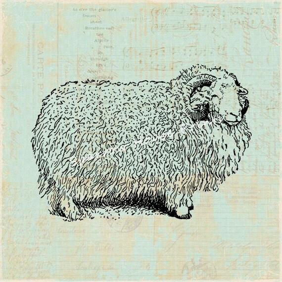 Sheep Wall Art Home Decor ~ Antique herdwick ram print wall art sheep home decor vintage