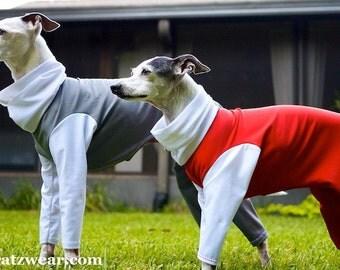 Custom Made UV Protective Dog Sun Suit for Italian greyhounds, hairless breeds-custom made, prevents sunburn with 50 SPF