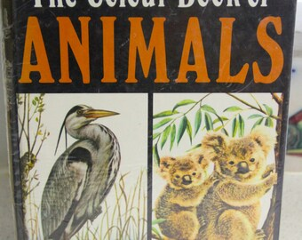 Vintage The COLOUR BOOK of ANIMALS  1974