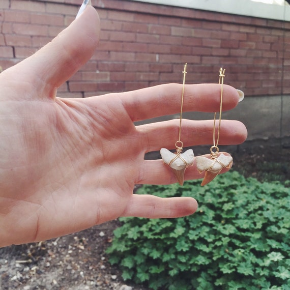 Predator Earrings