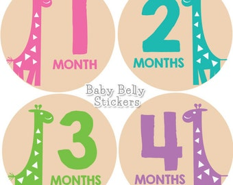 Baby Month Stickers, Monthly Baby Stickers, Monthly Milestone Stickers, Baby Monthly Stickers, Baby Belly Stickers, Baby Girl Giraffe
