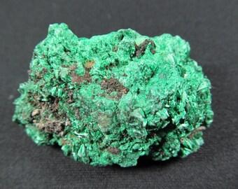 Fibrous Malachite - Congo - Miniature Mineral Specimen