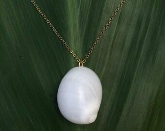 Rare white Hawaiian moon shell necklace