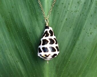 Hawaiian Hebrew cone shell necklace