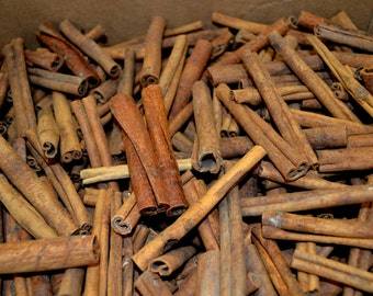 Cinnamon Sticks and Pieces- 5 Pounds