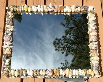 "Sea shell Mirror beach decor ocean decor home decor nautical decor seashell hand crafted hand made seashell art seashells 19 1/2"" x 23 1/2"""