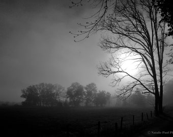 Misty Cades Cove Sunrise in Black and White