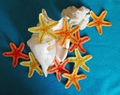 Crochet starfish set of 3  / decorative starfish / red starfish / yellow starfish / applique starfish / red star /