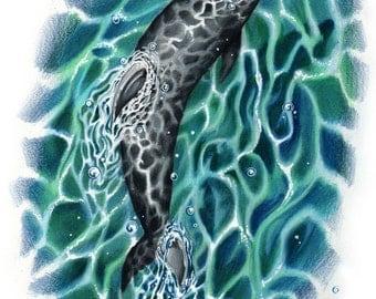 Dolphin Swimming Original