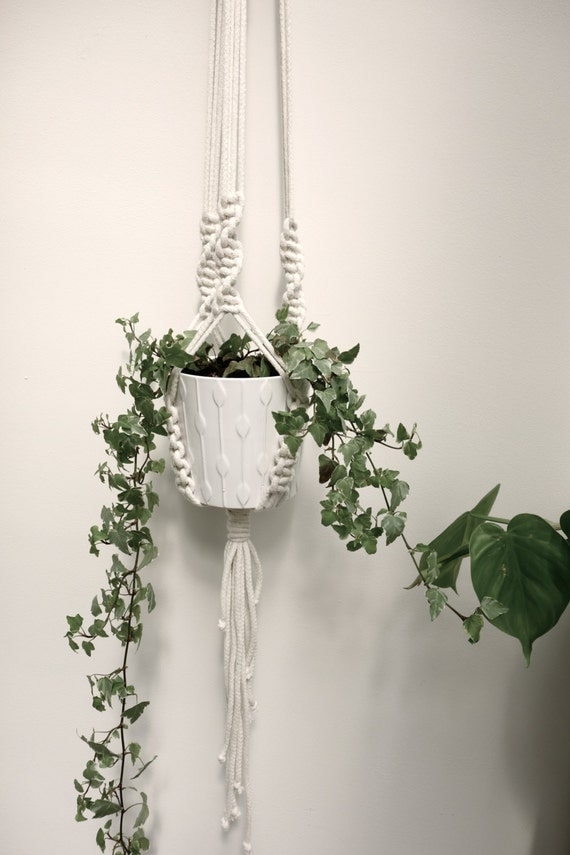Macrame Plant Hanger Knotted Cream Rope Plant Hanger With