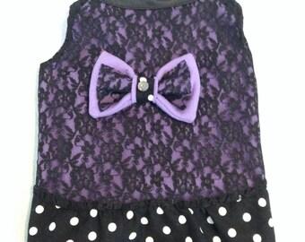 Dog Dress, Purple, Lace Dress