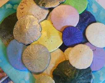 Multi-Colored Sand Dollars