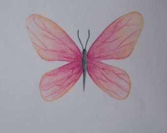Pastel drawing pink butterfly