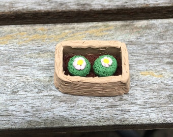 Two Cacti in a Pod Polymer Clay Figurine