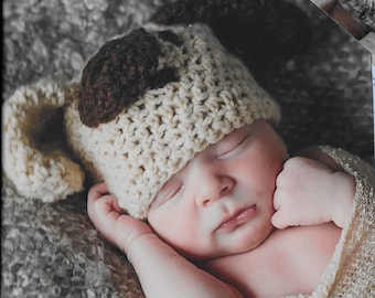 Crochet baby dog hat