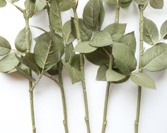 "ONE 26"" Botanic Rose Stem with Leaves for Floral Arranging - Flower Arrangement, Rose Bouquet - - ITEM 039 -1"
