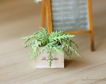 Dollhouse Miniature Plants - Green Fern in Shabby Pot