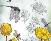 Fantasy Art Print - Dragonfly Print - giclée WALL Art PRINT nature Art - Fantasy Art  - by the Filigree