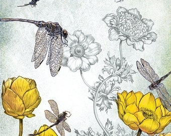 Fantasy Art Print - Dragonfly Print - giclée WALL Art PRINT nature Art - Fantasy Art  - by the Filigree