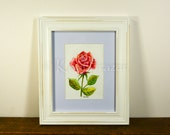 Red Rose watercolor painting / ten most interesting flower series / Original watercolor / flower painting 5 x 7