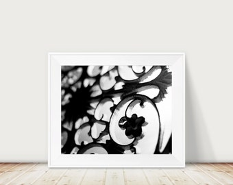 The Backlight Fine Art Print--Abstract Floral Black and White Contrast Modern Home Decor Wholesale