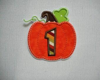 Free Shipping Pumpkin   Fabric Iron on applique