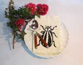 Set of Four Ivory Cotton Napkin with Hand Print Beetle Design