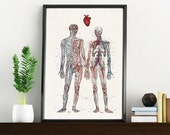 Valentine gift. Love you with all my heart- First aniversary gift. Anatomy Print - Husband gift - Anatomy poster print WP167