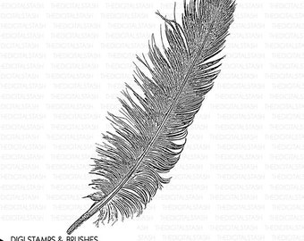 Bird Feather - Digital Stamp and Brush - INSTANT DOWNLOAD - for Invites, Collage, Scrapbooking, Cards, Crafts and More
