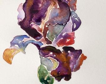 Royal Purple Iris - Original Watercolor Print, Fine Art Print, Giclee, Original Art, Floral Iris