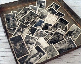 Vintage Dogs & Friends Cigarette Cards. Original photographic cute cards. Listing is for 10 randomly selected cards.