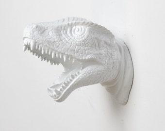 White Dinosaur Wall Art - The MINI Bronson  Miniature White Resin T-Rex Head - Small Trex Dinosaur Decor by White Faux Taxidermy - Chic Art