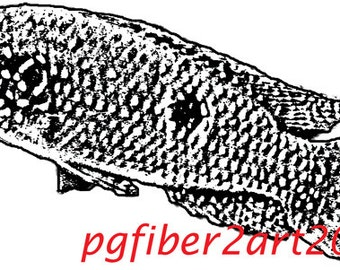 Thermofax Screen Fish 1