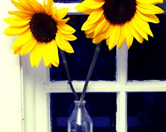 Sunflowers in a Cottage Window Photograph 5x7 8x10 Print