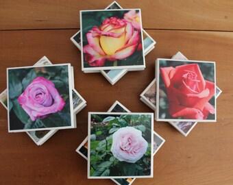 Coasters: Rose Garden