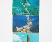 Vintage Postcards (3) Florida Mermaids Old Postcards Weeki Wachee Springs Tarpon Springs St Nicholas Greek Orthodox Church Lot P130