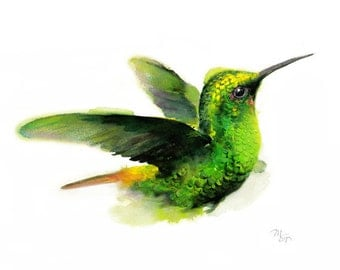 Hummingbird Watercolor Giclee Print - Modern Watercolor Bird Art -  Wildlife Illustration, Green Yellow Bird Paintng