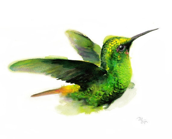 Hummingbird watercolor wall decor modern watercolor bird art for Hummingbird decor