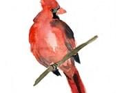 Art Print Red Cardinal, bird art watercolor painting, Cardinal print,  NC state bird, Christmas art, Nursery art, nature art, wild life