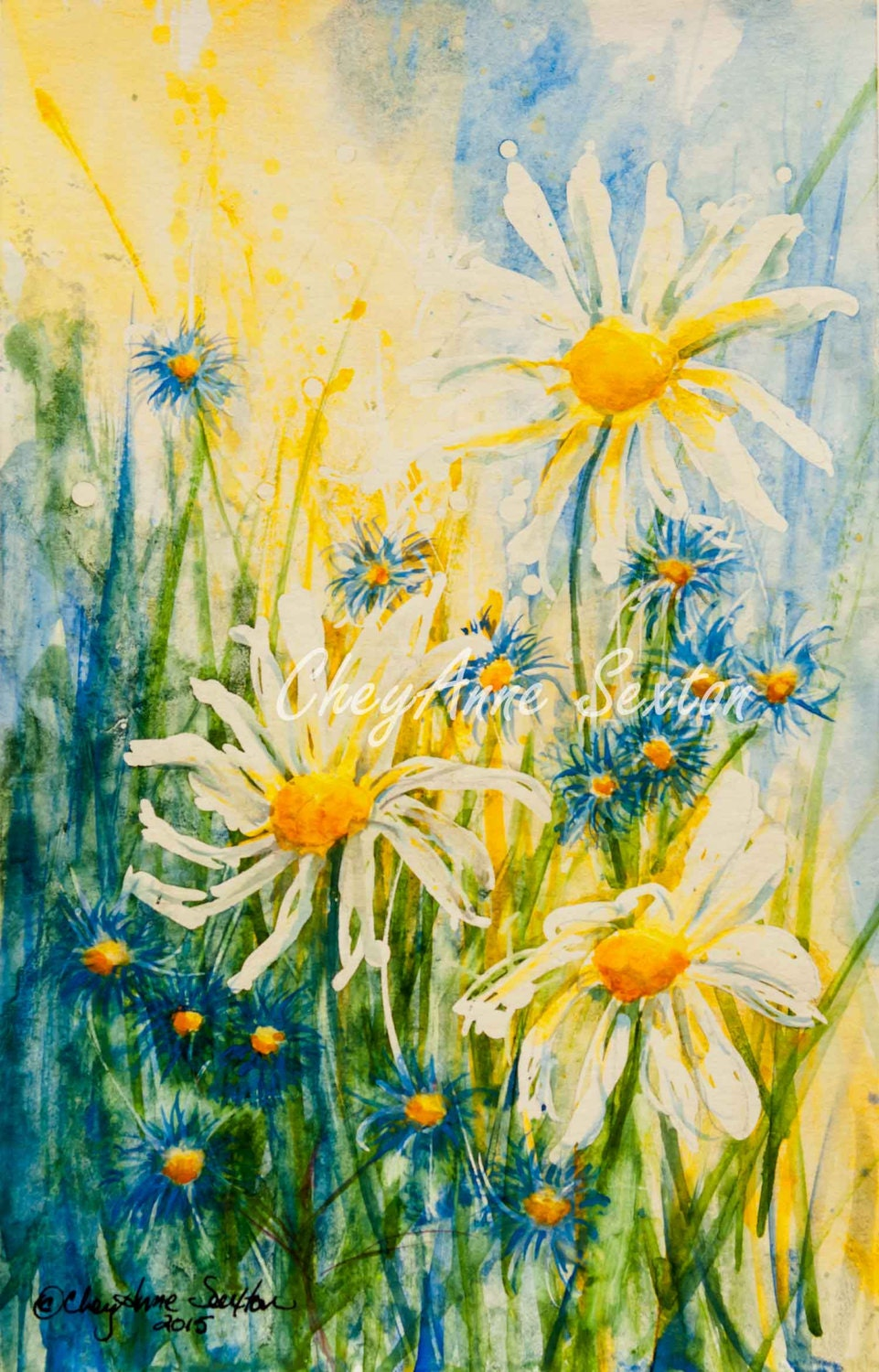 Daisies And Little Blue Flowers In Sunlit Grasses Yellow Green