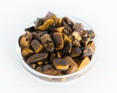 ON SALE 50% Off - 24g Drilled Tigers Eye Gemstone Chips - Golden Brown Silk Lustre (Organic Shape from 3mm - 10mm)