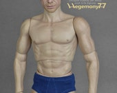 1/ 6 scale men's underwear for: regular size action figures and male fashion dolls