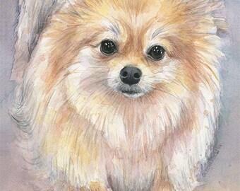 Pomeranian Watercolor Art Print, Pom Painting, Animal Painting, Pomeranian Art, Pomeranian Painting, Pom, Dog, Pom Puppy, Pomeranian Print