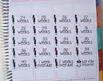 Pregnancy Stickers, Set of 62 Pregnancy Countdown Stickers