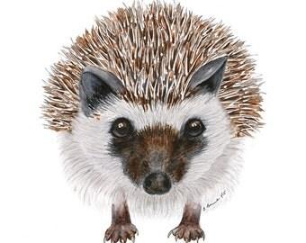 Woodland Animal Art, Hedgehog Watercolor, Large Print, Animal Watercolor, Woodland Animal Print, Large Animal Print, Animal Art