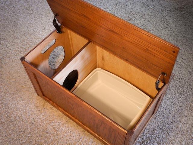 Curio Cat Litter Box