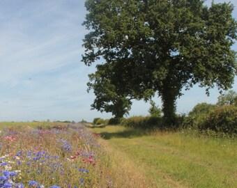 Wildflowers -A6 vertical notecard