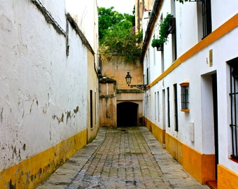 Romantic Alley in Seville   Spain Photography